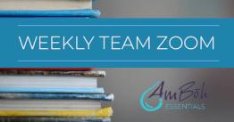 Weekly Team Zoom